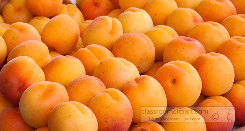 apricots-at-market-photo-image-593b.jpg