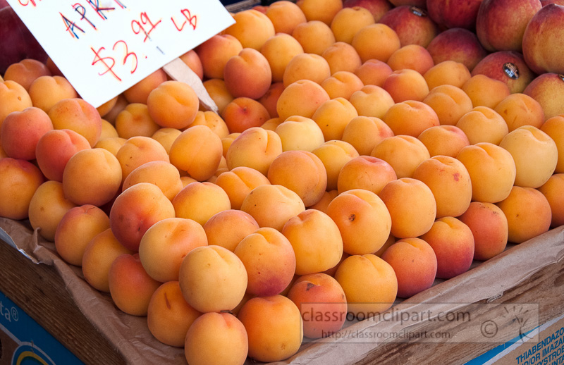 apricots-in-wooden-crates-farmers-market-photo-image-593.jpg
