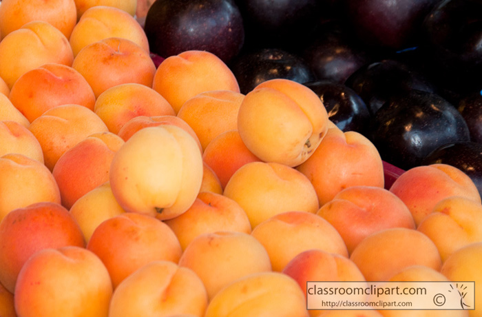 apricots-outdoor-market-seattle.jpg