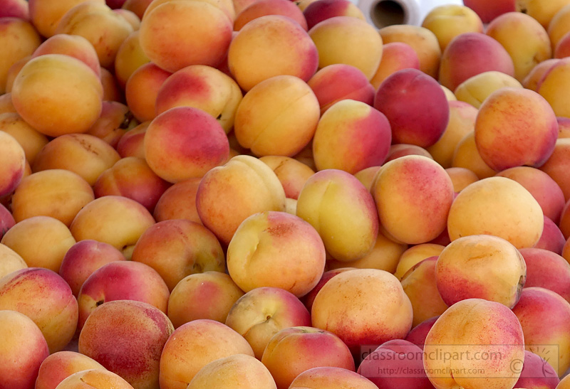 photo-fresh-apricots-at-market-helinski-finland-2527a.jpg