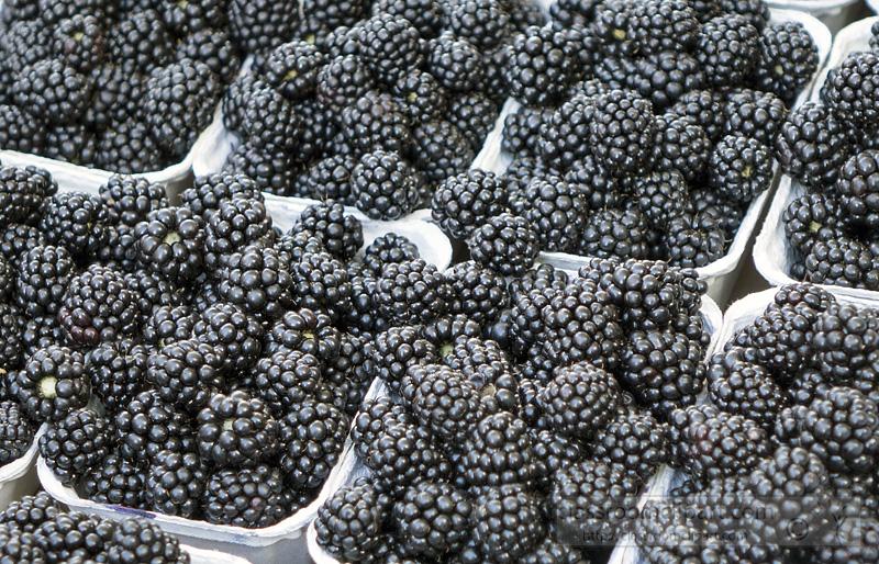 picture-of-blackberries-at-market-image-1649.jpg