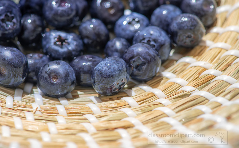 wicker-decorative-basket-with-fresh-blueberries-photo-image-6087.jpg