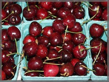 P1036608A_cherryA.jpg