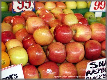 P1036609A_appleA.jpg