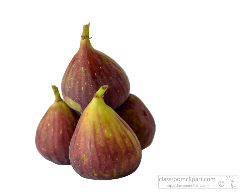 four-fresh-figs-stacked-photo.jpg