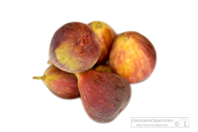 group-of-figs-top-view-white-background-photo--4.jpg