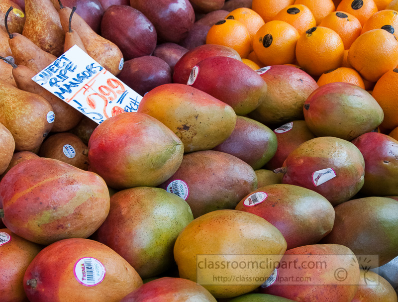sweet-fresh-mangos-at-farmers-market-photo-image-575.jpg