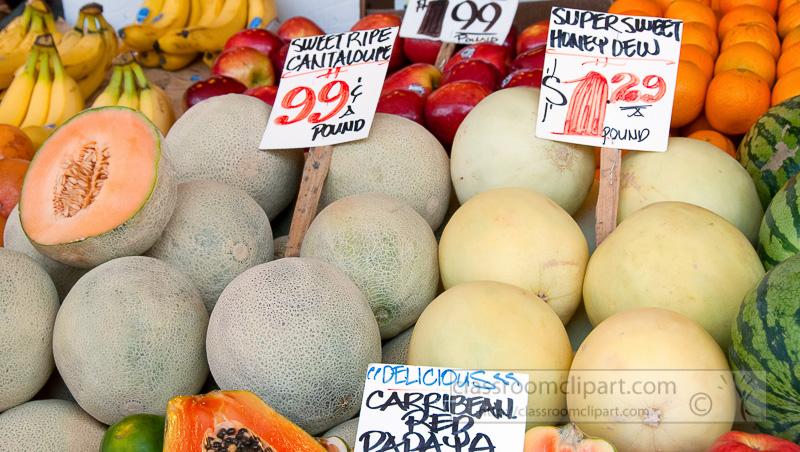 sweet-cantaloupes-at-farmers-market-photo-image-571.jpg