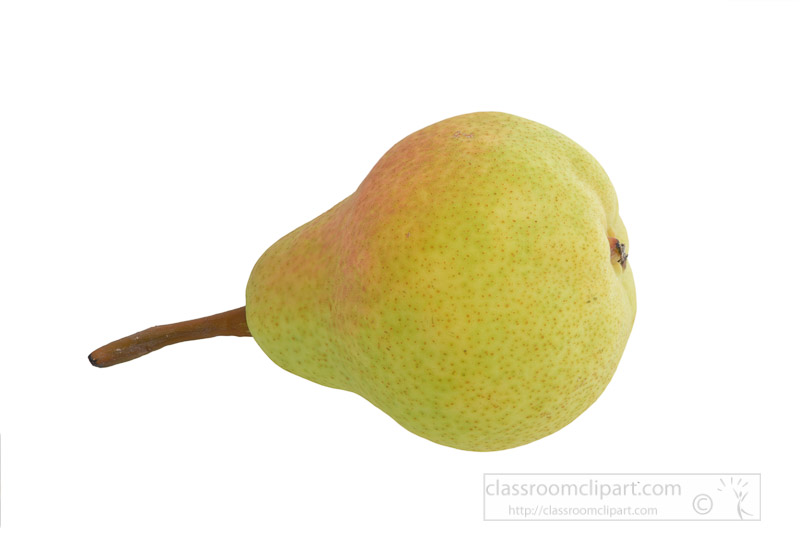 single-pear-on-side-with-white-background-photo-image-25.jpg
