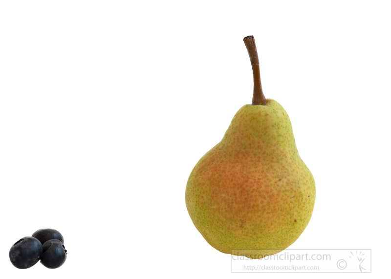 single-upright-pear-with-white-background-photo-image-6146-pear.jpg