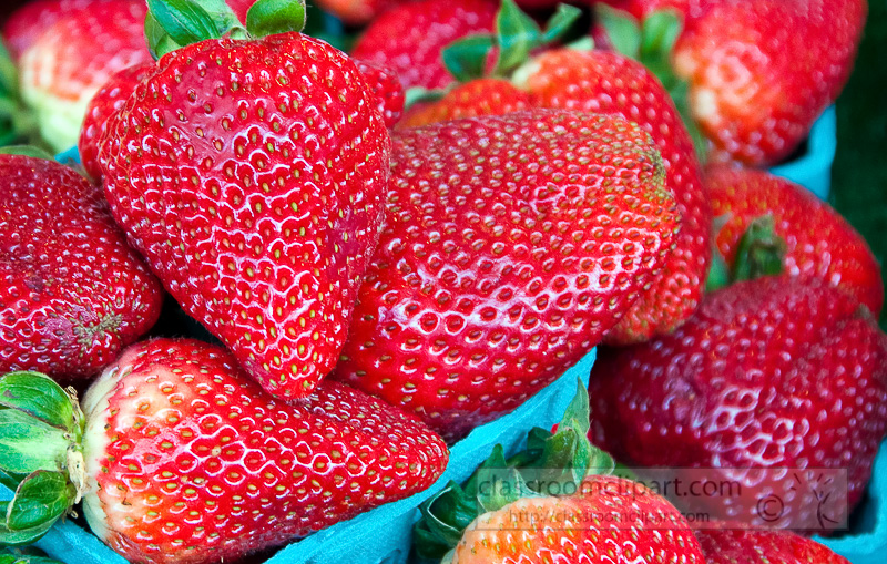 closeup-fresh-strawberries-at-farmers-market-photo-image-582b.jpg