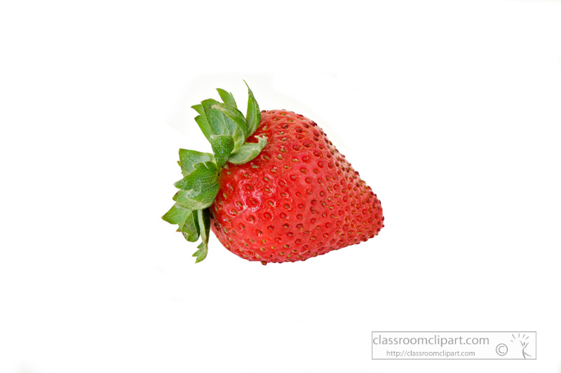 photo-image-single-strawberry-on-white-background.jpg