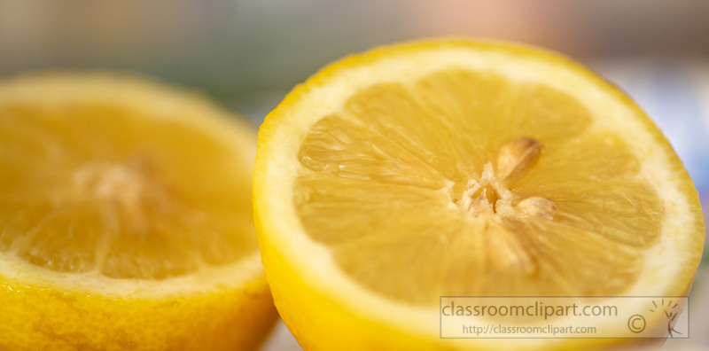 whole-lemon-cut-in-half-photo-8509914.jpg