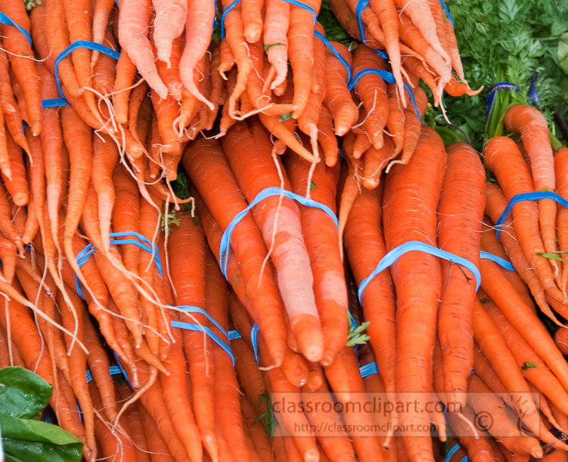 bunches-of-fresh-carrots-at-farmers-market-photo-image-557.jpg