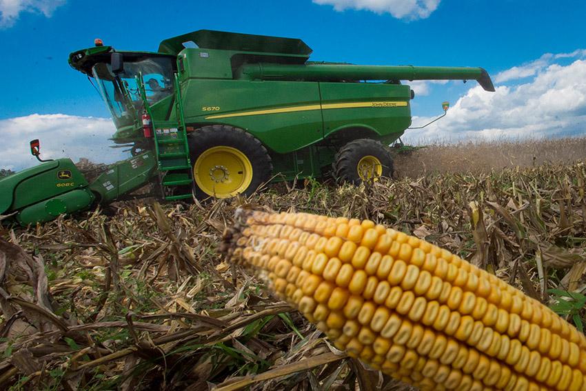 harvests-corn-from-field.jpg