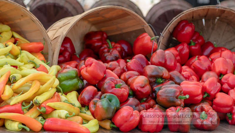 Display-of-red-and-yellow-bell-peppers-at-a-farmer's-market-0184.jpg