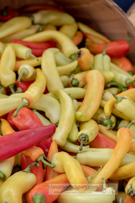 multi-colored-peppers-at-the-farmers-market--00150.jpg