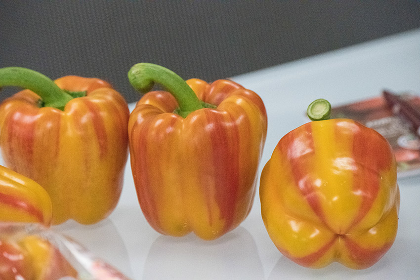 red-yellow-bell-pepers.jpg