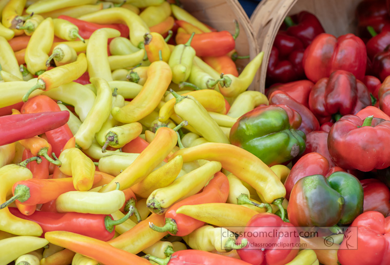 small-yellow-peppers-with-red-green-bell-peppers.jpg