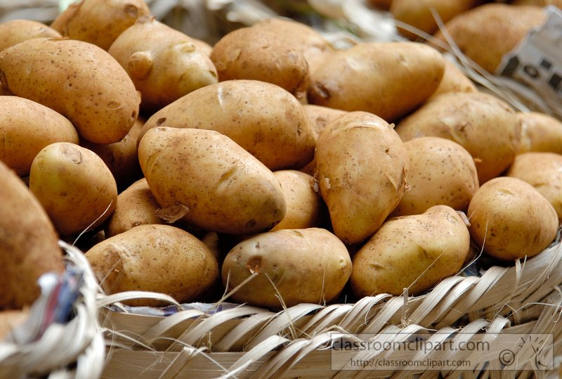 closeup-picture-of-potatoes-picture-039A.jpg