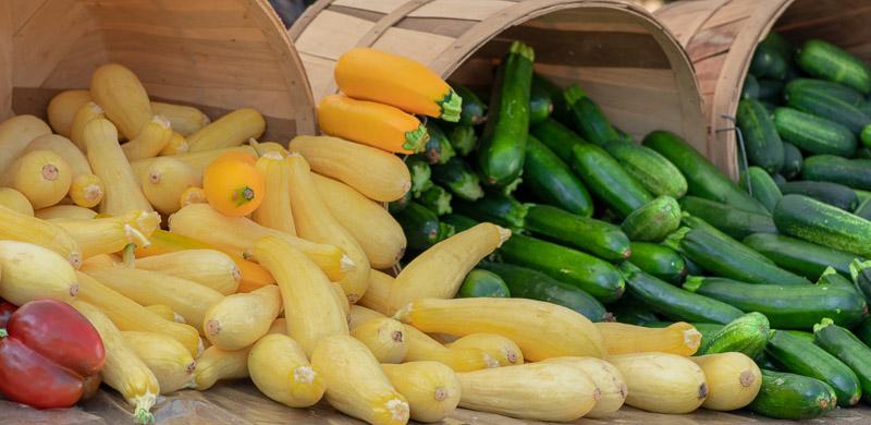 display-of-yellow--green-squash-00186.jpg