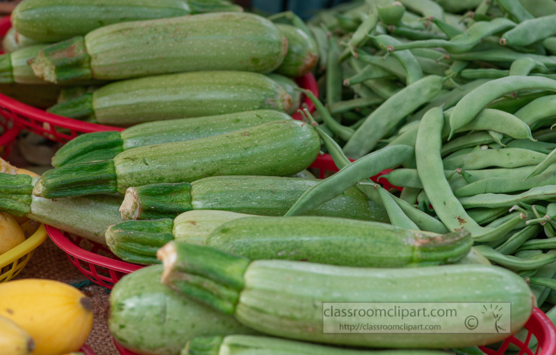zucchini-harvest-at-market-0126.jpg