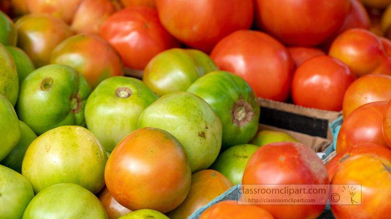 baskets-of-green-and-red-tomatoes.jpg