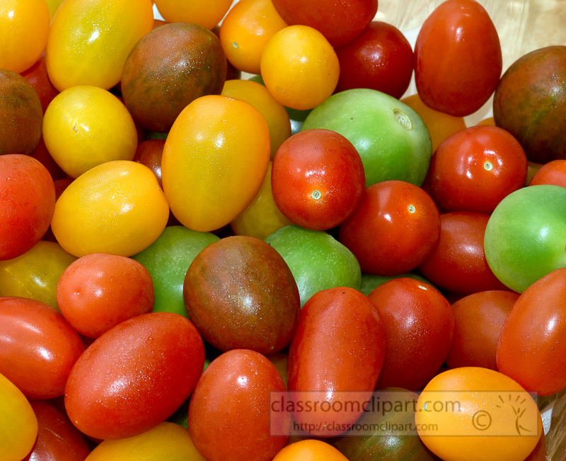 colorful-red-green-orange-yellow-heirloom-cherry-tomato-pic--3.jpg