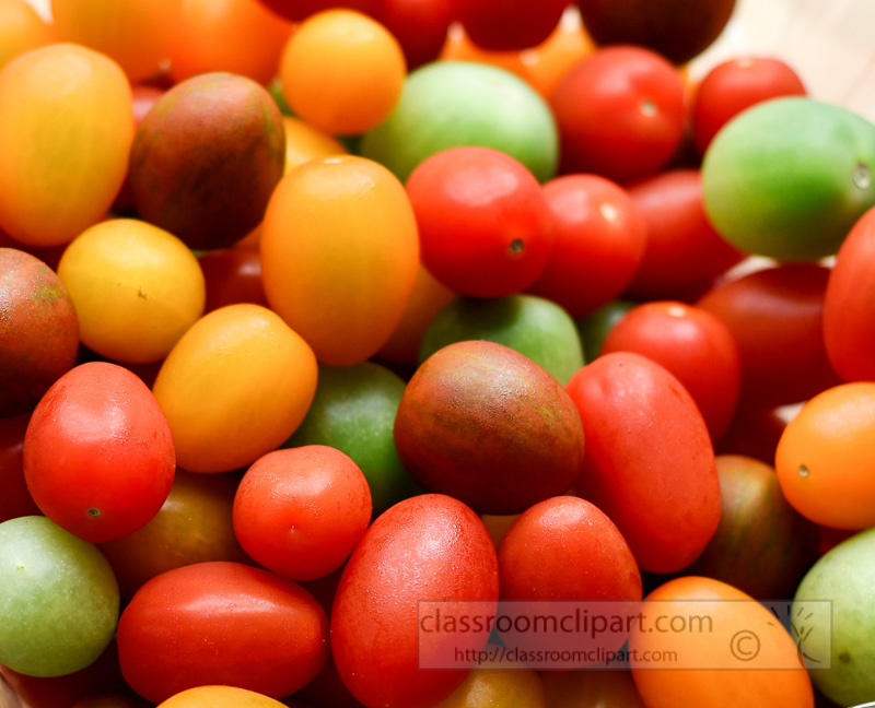 colorful-red-green-orange-yellow-heirloom-cherry-tomato-pic--4.jpg