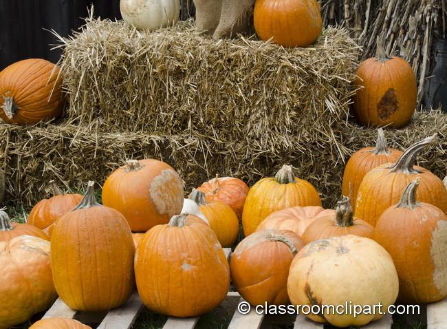 pumpkin_bale_hay_5020.jpg