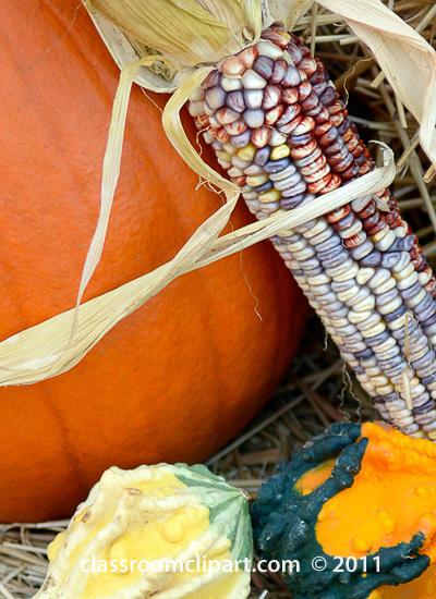 pumpkin_indian_corn_gourd_SM.jpg