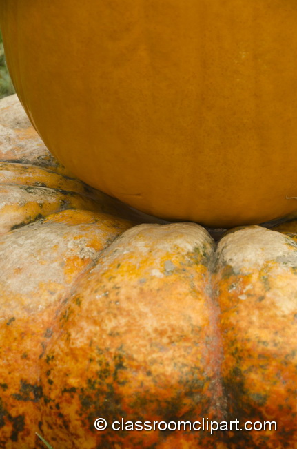 pumpkin_on_pumpkin_4978.jpg
