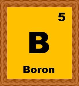 boron-5-B.jpg