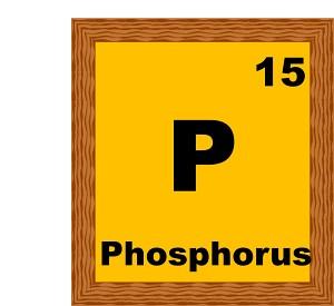 phosphorus-15-B.jpg