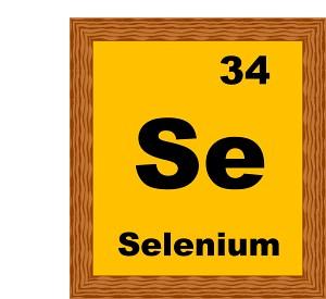 selenium-34-B.jpg