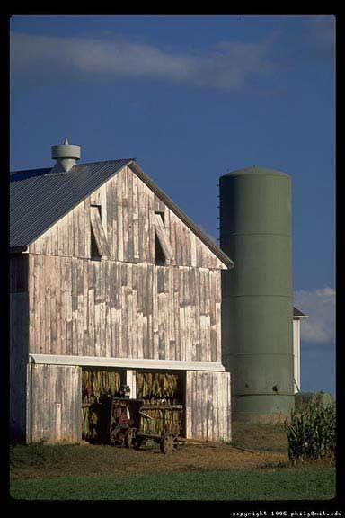 amish-farm-vert-93.jpg