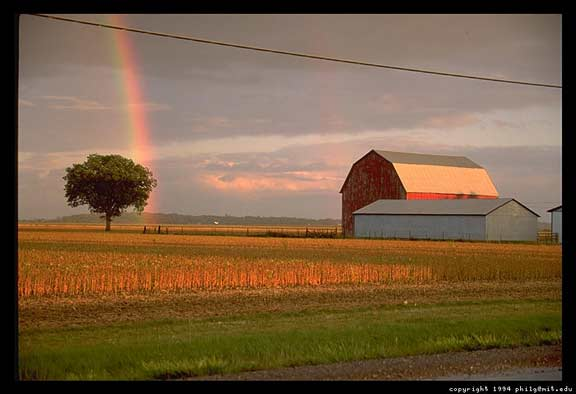 ontario-rainbow-barn-4.jpg