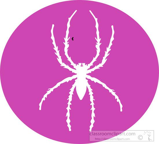animal-spider-round-icon-clipart.jpg