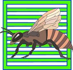 insect_icons_5.jpg