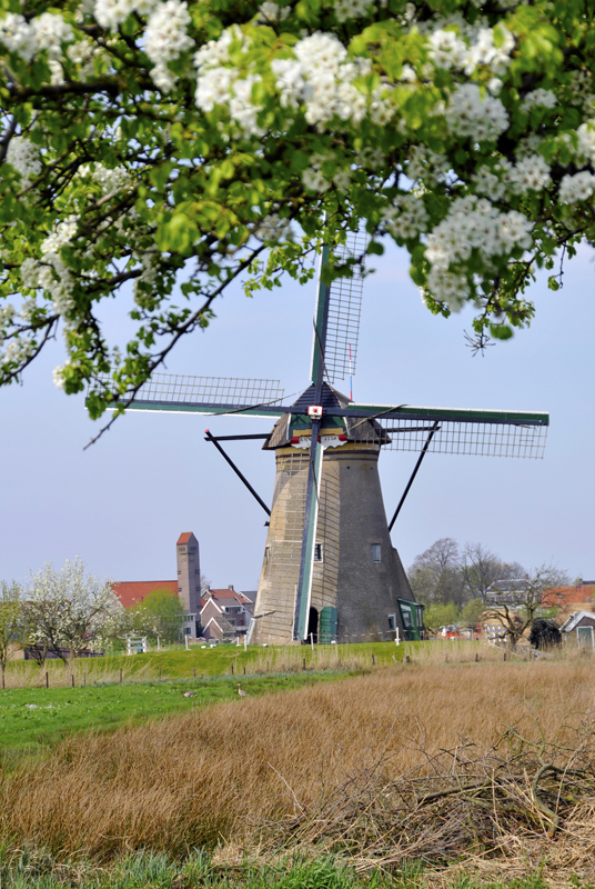 windmill_holland.jpg