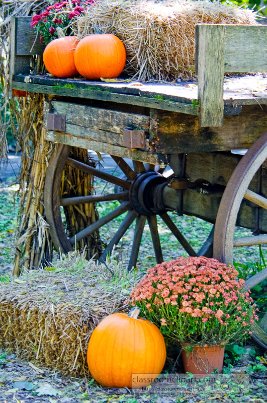 Wagon-with-fall-colors_1009_16.jpg