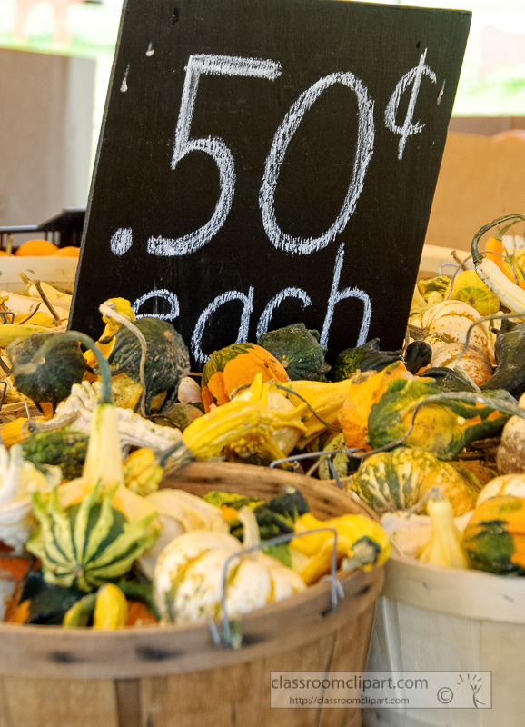 variety-gourds-for-sale-in-baskets.jpg