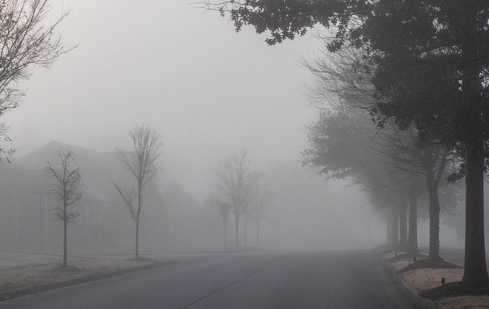 neighborhood street with morning fog.jpg