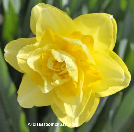 spring_4_10_13.jpg