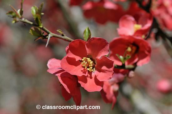 spring_4_10_30.jpg