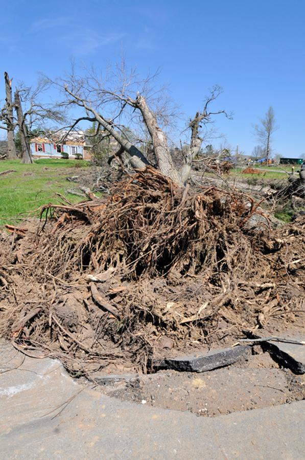 tornado_6654A.jpg