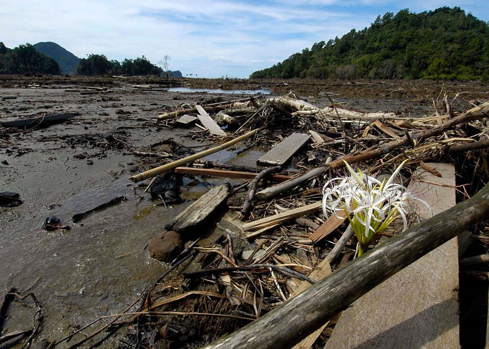 ruins-after-the-massive-tsunami.jpg