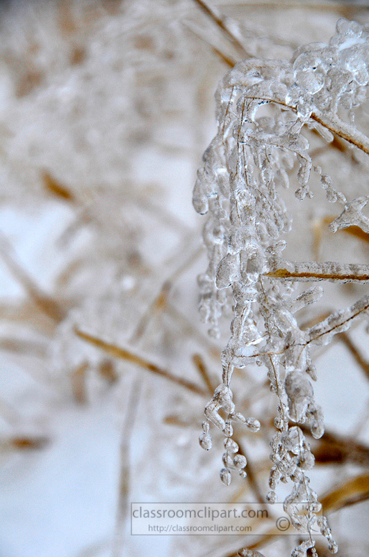 winter_2110_23.jpg