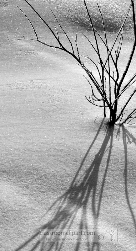 winter_2110_37.jpg