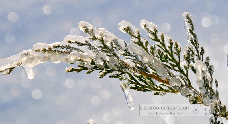 winter_2110_38.jpg
